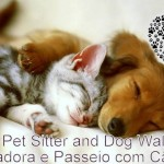 Aline Pet sitter- dog walker ou run walker